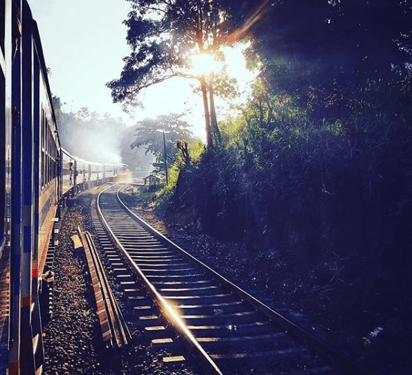 Why choosing to travel by train is environmentally friendly