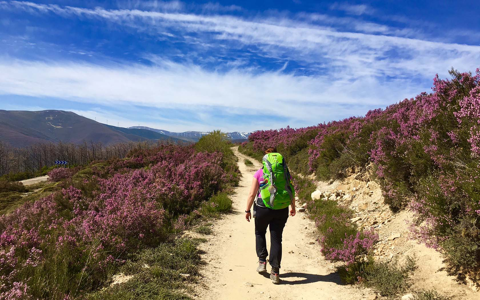 CAMINO DE SANTIAGO – SPAIN Trail