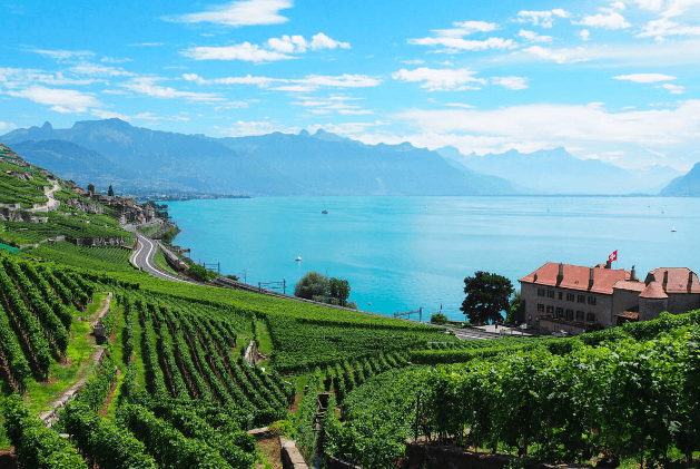 Lavaux Switzerland featuring in Best Wineries In Europe