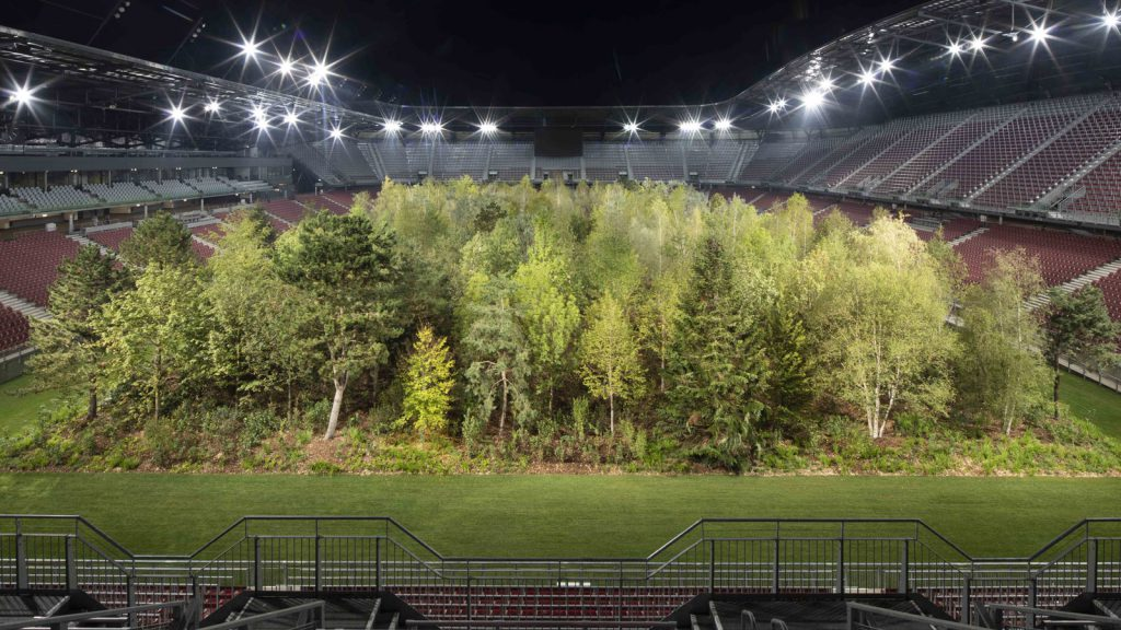 A Forest In A Football Stadium, Netherlands