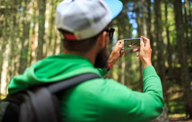 taking photo of a forest