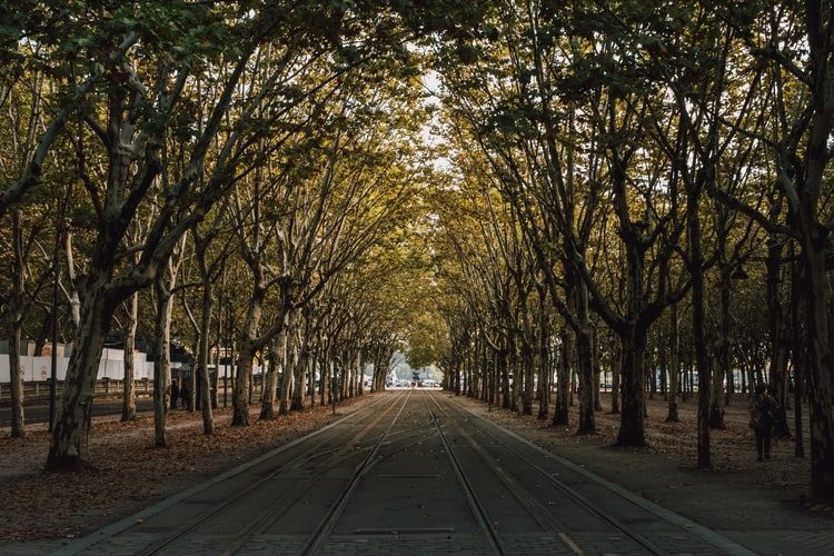 Fall Vacations in Bordeaux, France