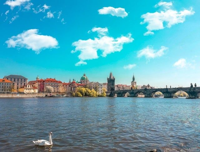 Prague Czech Republic and a swan swimming