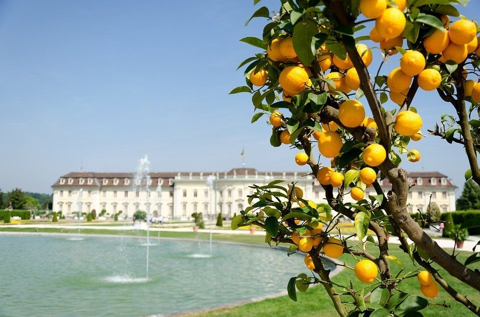 Ludwigsburg Palace, Germany Most Fruitful and Beautiful Gardens In Europe