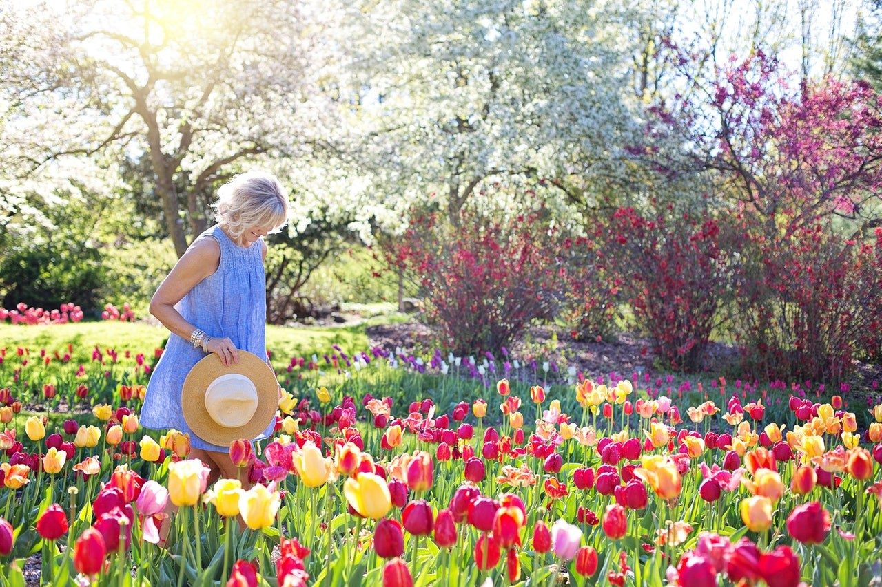 10 Most Beautiful Gardens In Europe   Save A Train