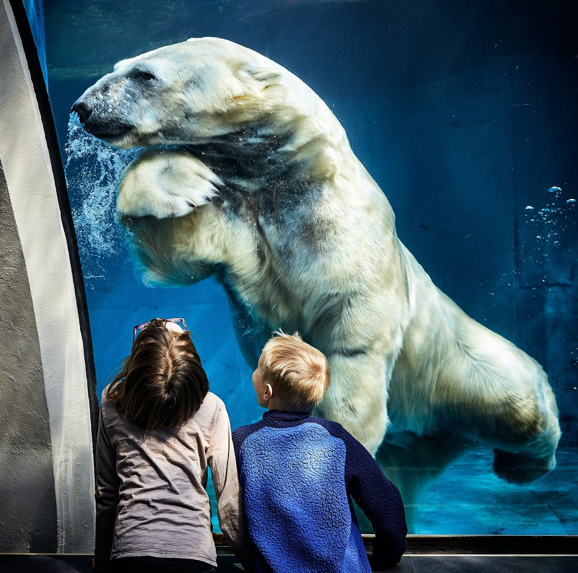 10 Best Zoos To Visit With Your Kids In Europe