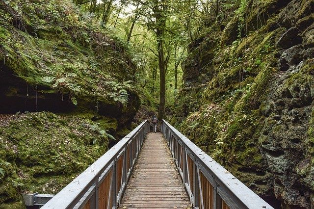 The Green Path of Mullerthal Region In Luxembourg